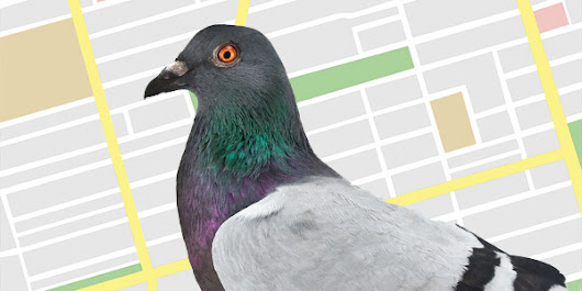 "Google ""Pigeon"" Updates Local Search Algorithm With Stronger Ties To Web Search Signal"