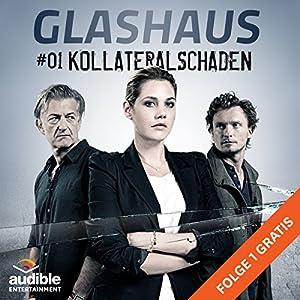 Kollateralschaden (Glashaus 1) | [Christian Gailus]