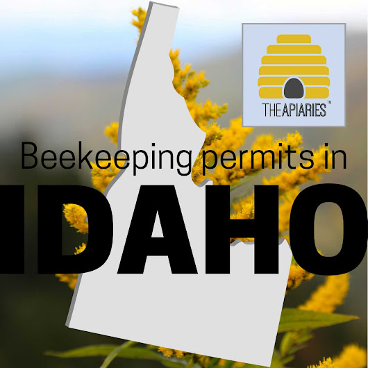 Apiary Leases In Idaho