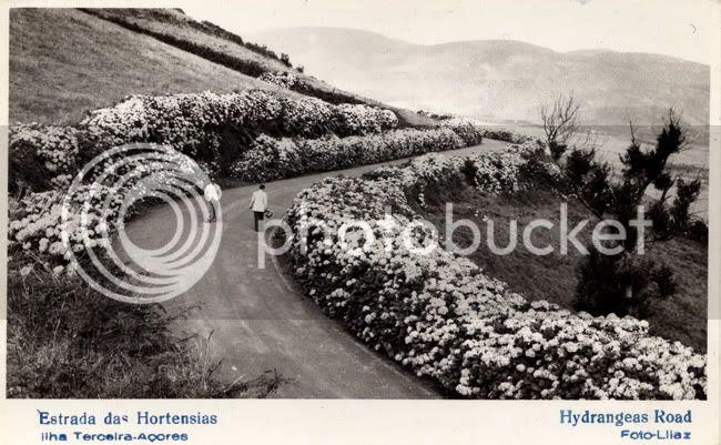 postcard 1961/Terceira
