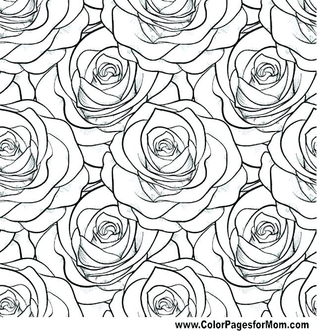 5200 Coloring Book Pages Of Roses  Images