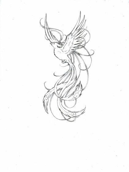Simple Phoenix Drawing At Getdrawingscom Free For Personal Use