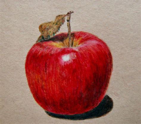 apple drawing  emueller  deviantart art fruit