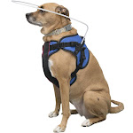 Blind Dog Halo Harness for Pets over 30 lbs