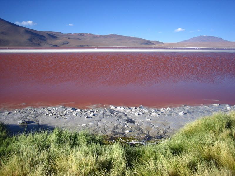 File:Colorada Lagoon Potosí Bolivia.jpg