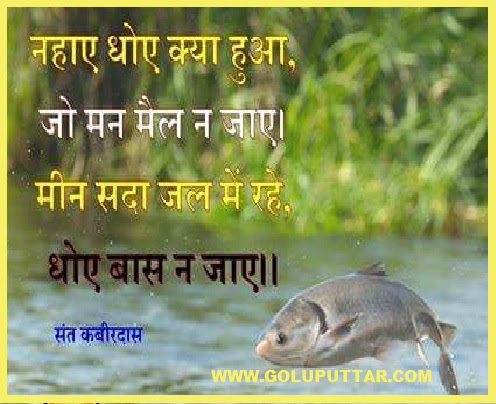Awesome Wise Quote About Life In Hindi Photos And Ideas