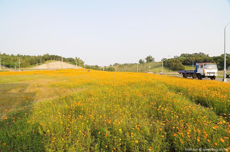 孔宅綠園 (3).jpg