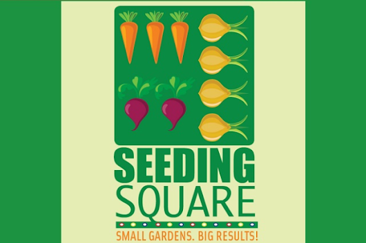 Seeding Square: Garden by Color and Number