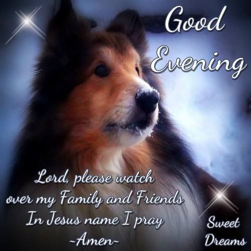 Good Evening Lord Please Watch Over My Friends And Family Pictures
