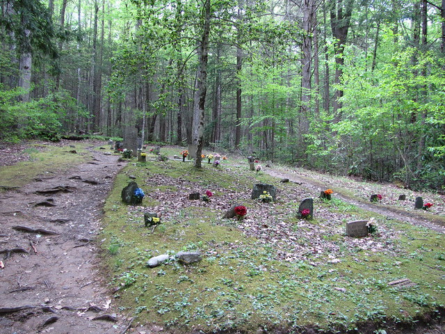 IMG_4934_Porters_Creek_Trail_Cemetery