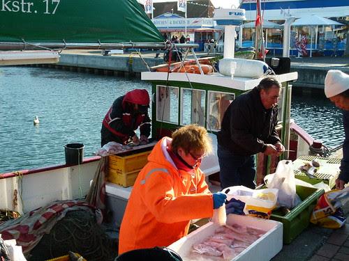 Fisch frisch vom Kutter