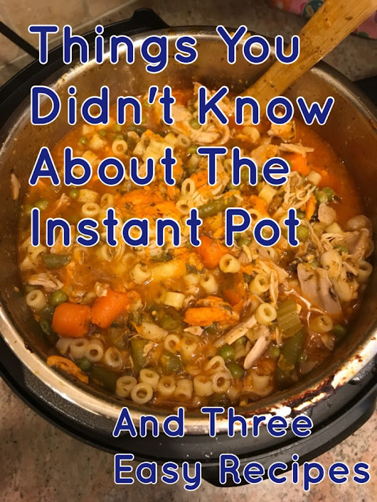 Things You Didn't Know About The Instant Pot - And Three Easy Recipes | Spit That Out: The Blog