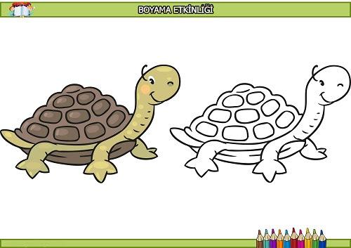 Sevimli Kaplumbağa Boyama Etkinliği Meb Ders