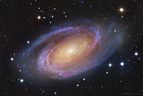 Bright Spiral Galaxy M81  : One of the brightest galaxies in...