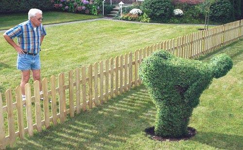 topiary moon