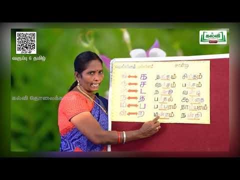 6th Tamil இலக்கணம்  இன எழுத்துக்கள் இயல் 1 பகுதி5 Kalvi TV