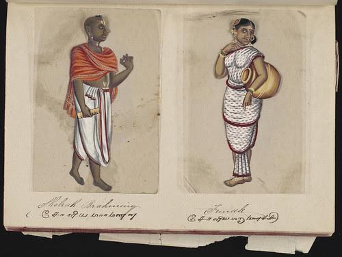 Sholeah brahminy - Female, Madura, 1837