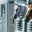 EQUINE BIOSECURITY - Equine Medical Services