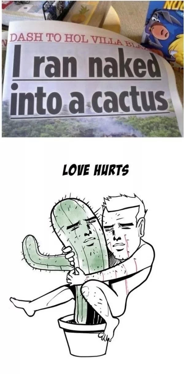 What Is Love Baby Dont Hurt Me Dont Hurt Me No More Meme By