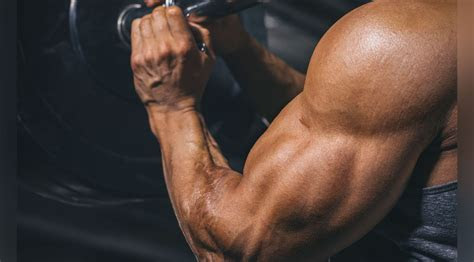 tips  bigger stronger arms muscle fitness
