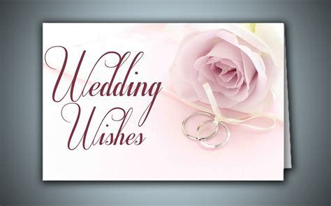 Wedding best wishes cards new wallpapers   Beautiful hd
