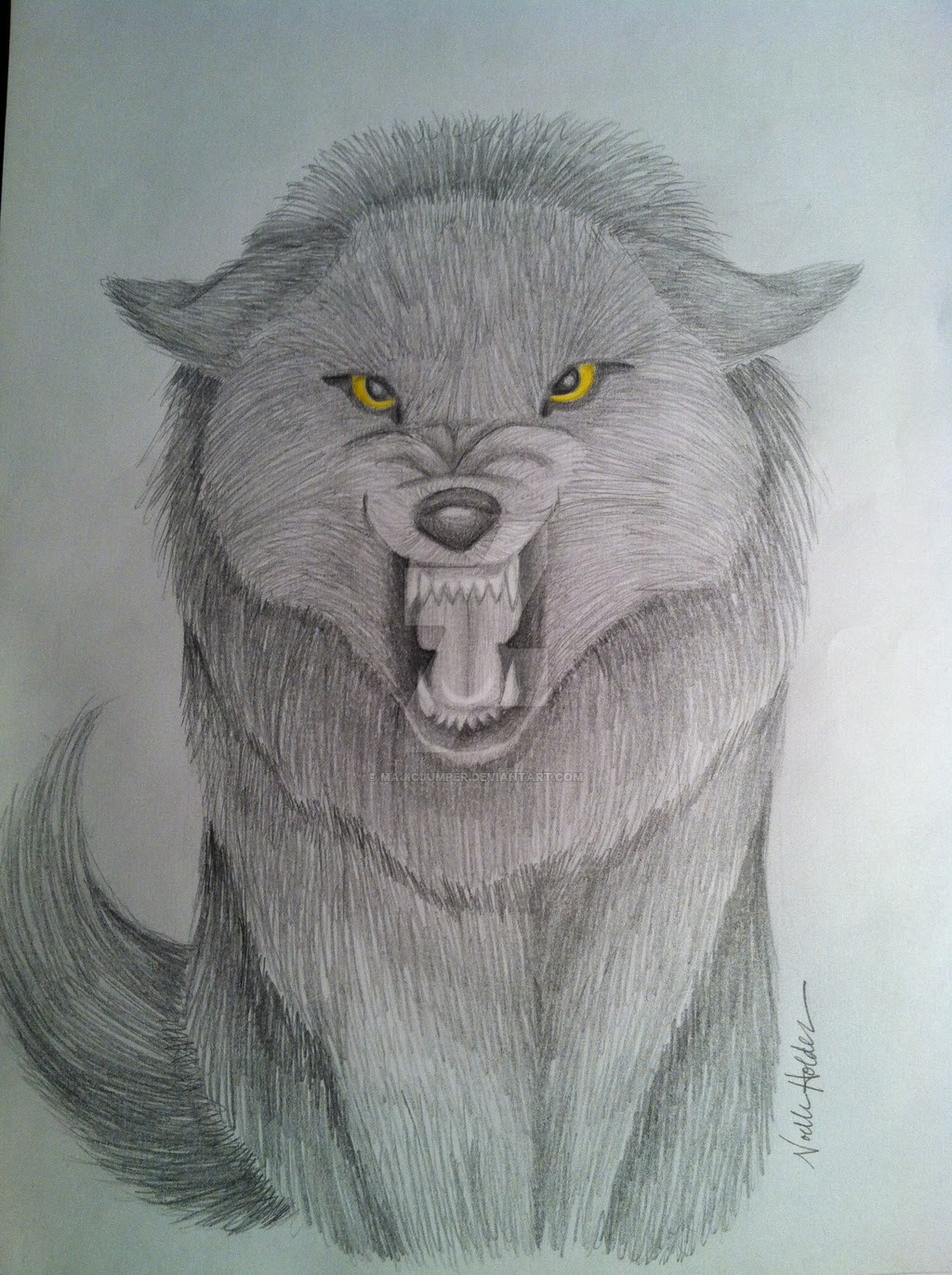 Growling Wolf Drawing at GetDrawings | Free download