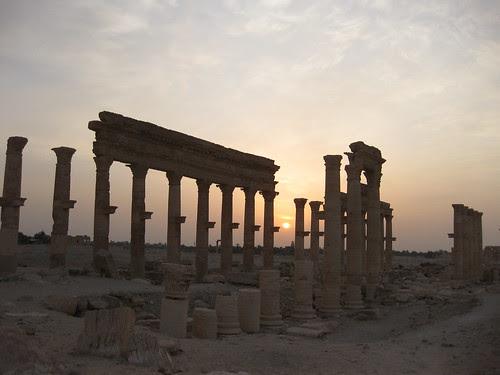 Palmyra (26)