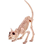 "Seasons Z28043 Halloween Skeleton Cat, Bone, 7"" H X 6"" W X 20"" L"