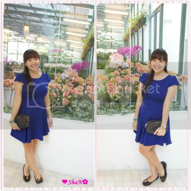 photo 31_zps9b2f94e7.jpg