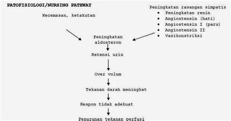 ebooks yuflihul khair nurisng pathway ckd  hipertensi