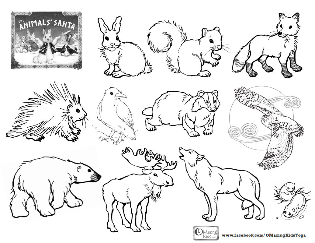 41 Top Arctic Animals Coloring Pages For Free
