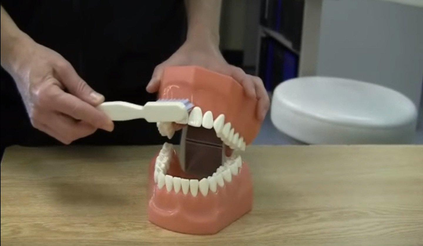 This Will Show You How to Brush Your Teeth The Right Way