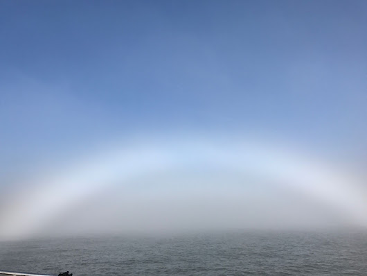 What's a fogbow and why did one appear over the bay yesterday?