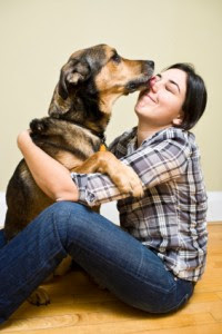 Three Dog Lovers Gift Ideas To Guarantee Smiles And Tail Wags