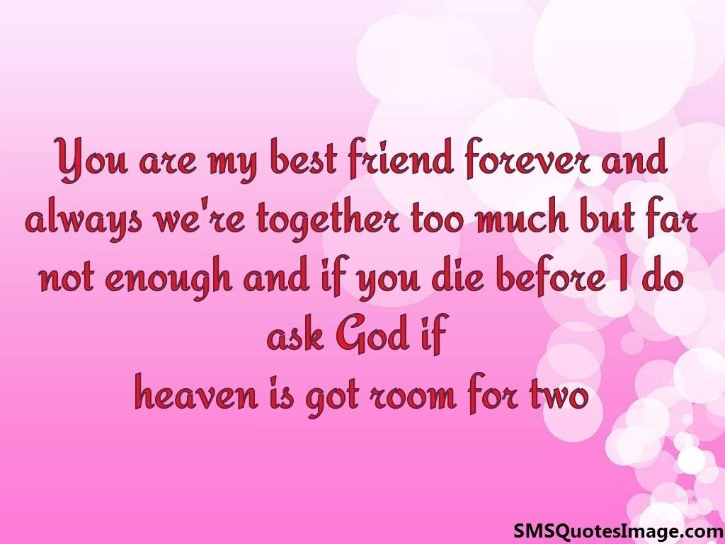 Friends Forever Google