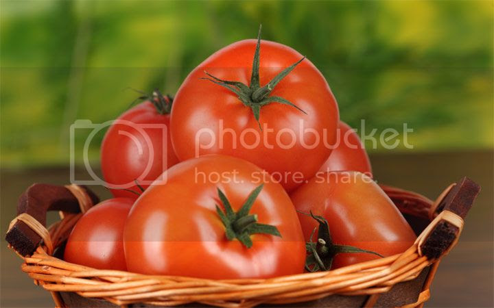 photo tomates_zpsa13c9718.jpg