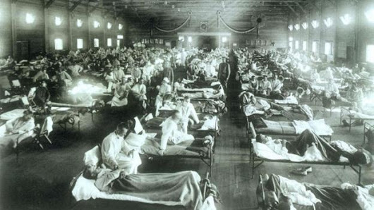 The flu that transformed the 20th Century