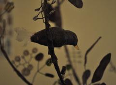 lamp :: lampe