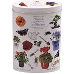 Vanilla Fudge Gift Tin, Thank You Flowers| Gardiners of Scotland