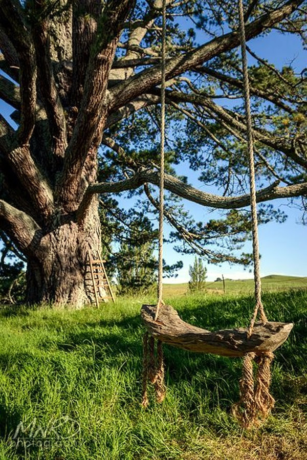 DIY Tree Swing Ideas For More Family Time (20)