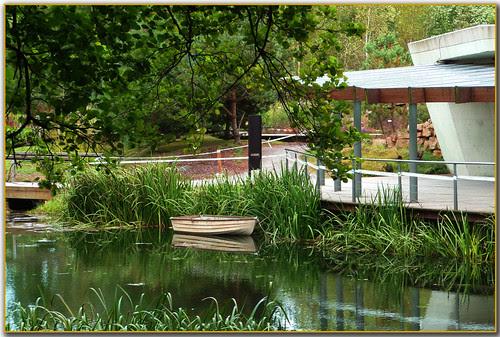 Una barca en el estanque