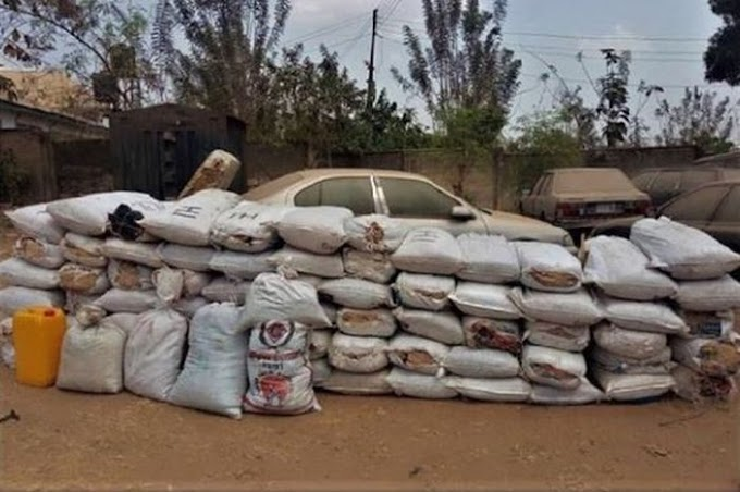 73 Bags Of Cannabis Seized In Osogbo (Photo)