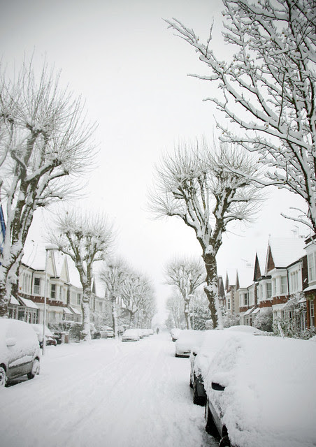 Our street in snow
