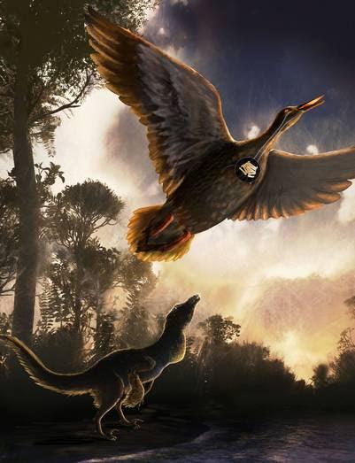El ave prehistórica de 70 millones de años.