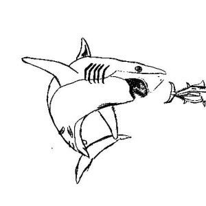 a Tuna Coloring Page | Clipart Panda - Free Clipart Images