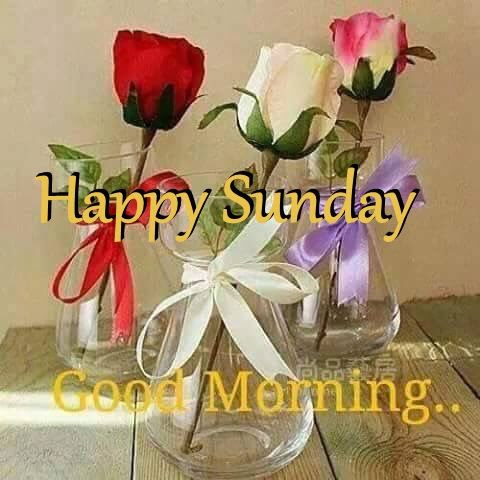 Happy Sunday Good Morning Flowers Pictures Photos And Images For