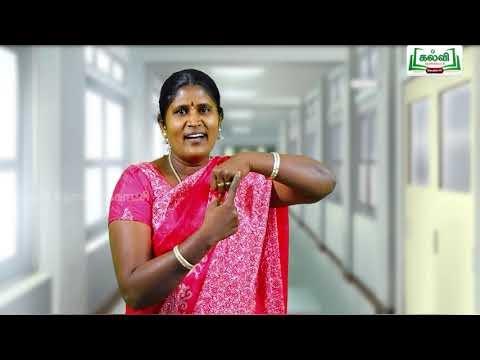 5th Maths Bridge Course அளவைகள் - கொள்ளளவு நாள் 3&4 Kalvi TV
