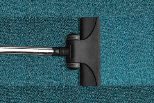 How Often Should I Have my Carpet Professionally Cleaned?  | Kent Clean