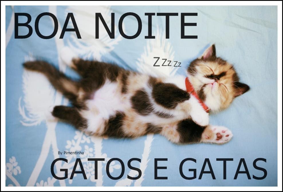 Imagens Para Facebook De Boa Noite Engraçado Avaré Guia Avaré