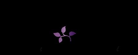 Sulu Boya Tasarımlı Davetiye Düş Kapanı Temalı Düğün Davetiyesi